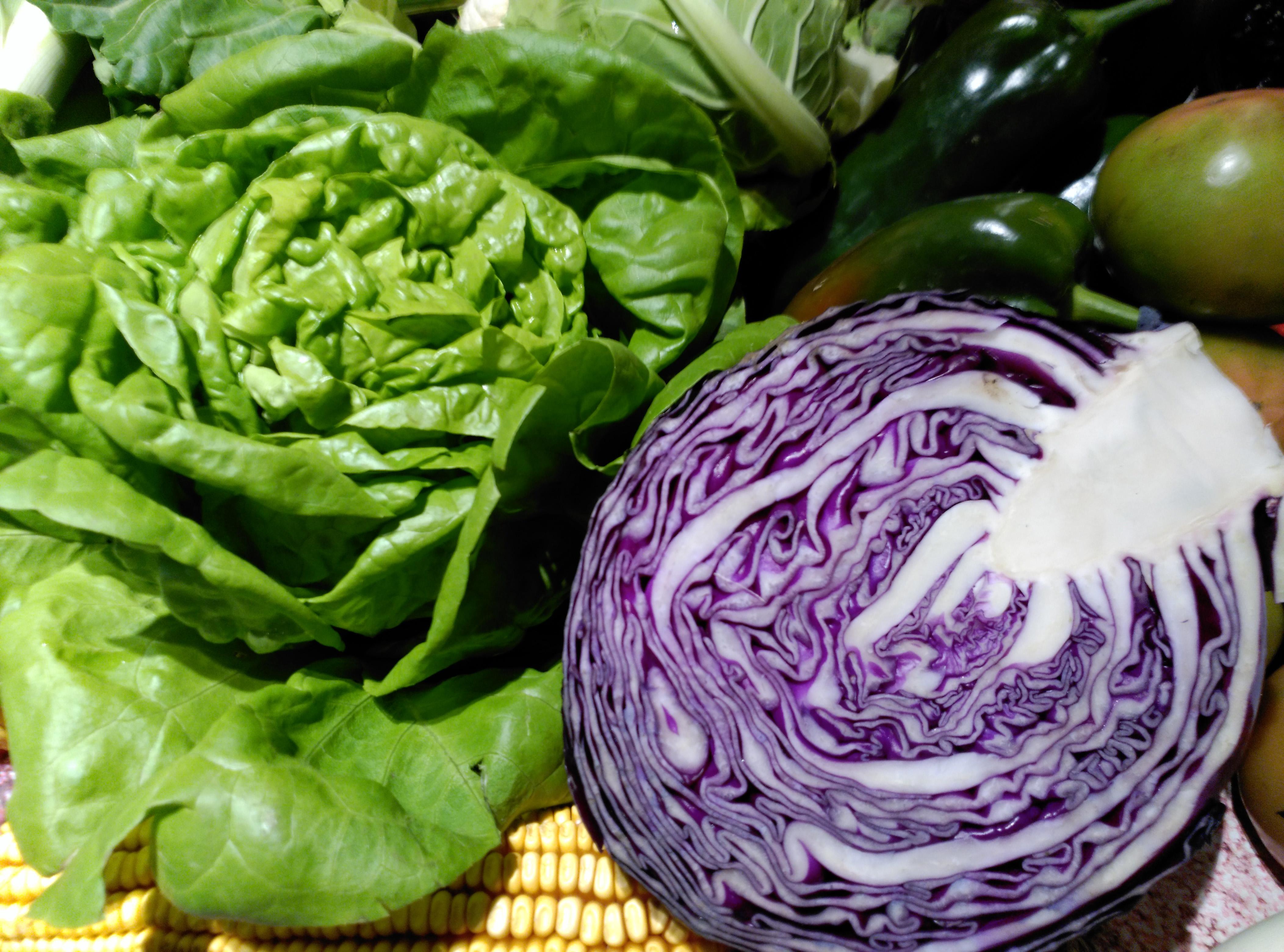 pacto-milan-alimentos-saludables