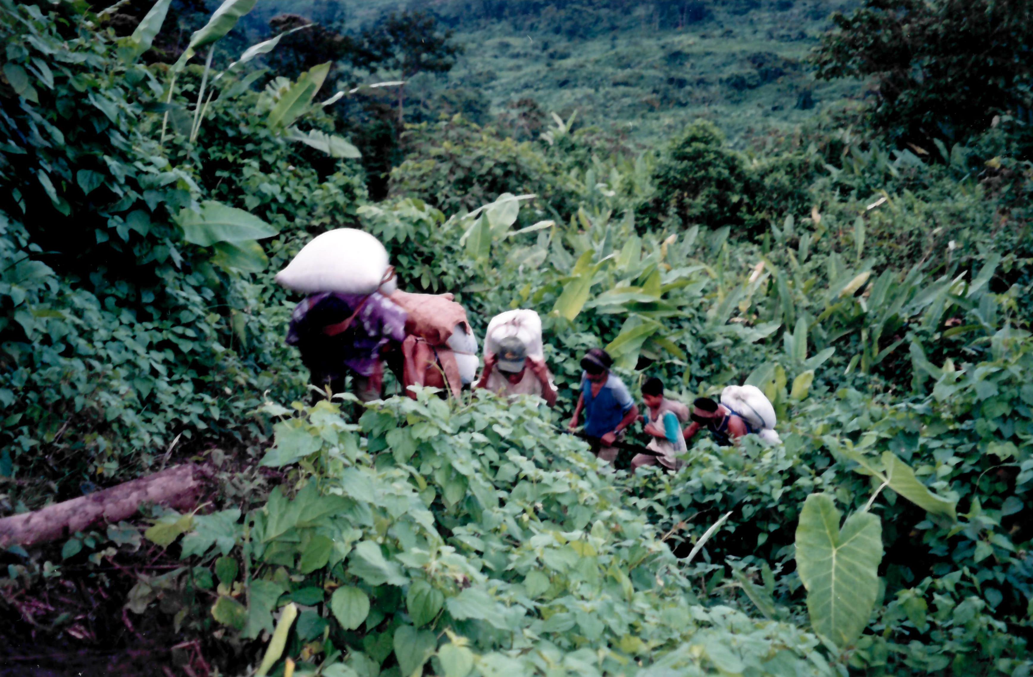 Guatemala campesinos