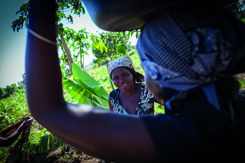 Mozambique Soberanía Alimentaria