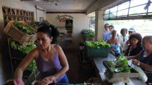 Cuba venta particular