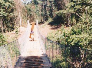 Guatemala retorno selva