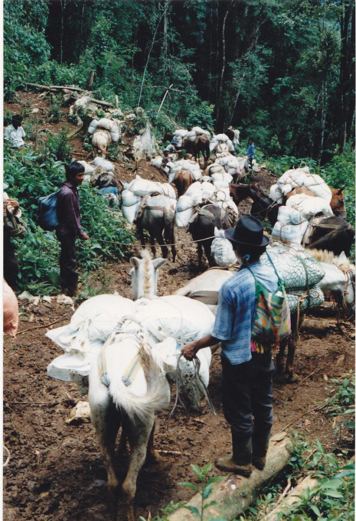 Mundubat ayuda humanitaria selva